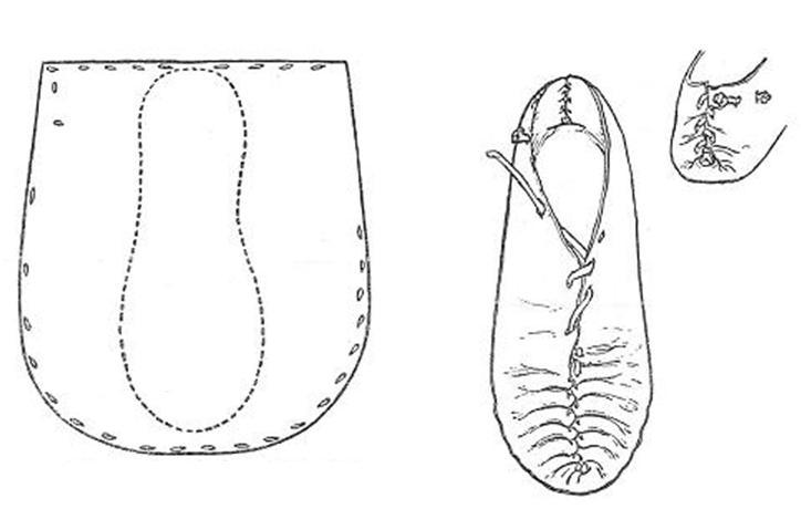 Fig. 7. Shoe: Type 3. National Museum W 5. Drumacoon Bog, Co. Cavan.
