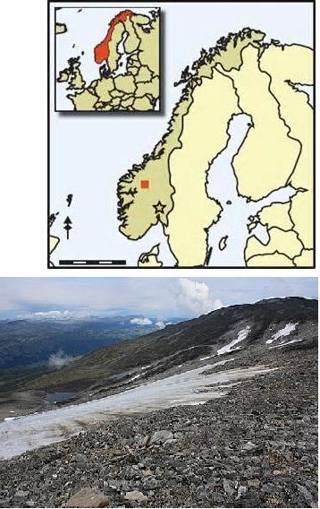 the-glacier